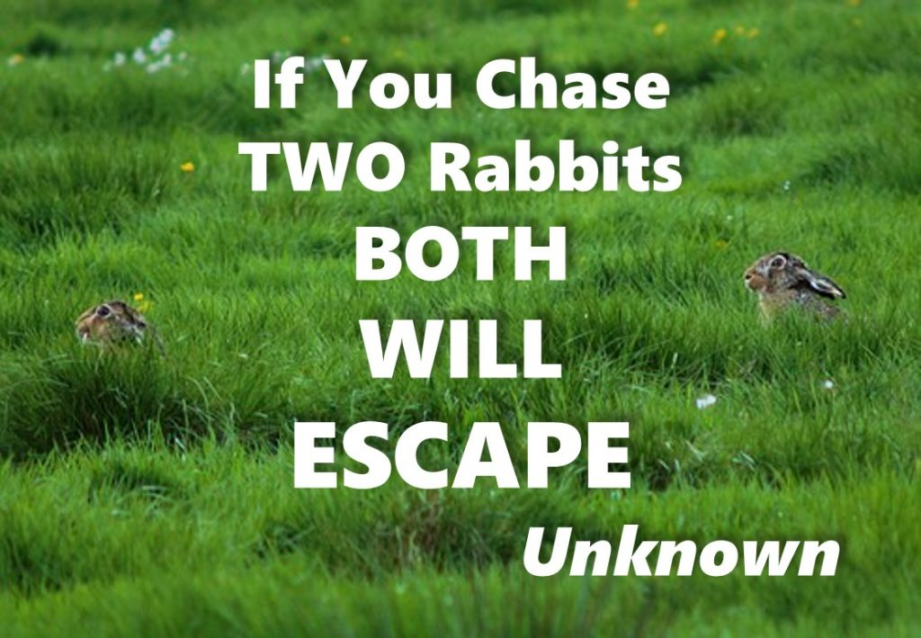 Choice overload - If You Chase Two Rabbits BOTH Will Escape - Unknown