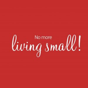 living an extraordinary life - no more living small!